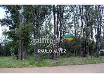 https://www.gallito.com.uy/terrenos-venta-playa-verde-te1012-inmuebles-20052678