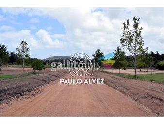https://www.gallito.com.uy/terrenos-venta-piriapolis-te1225-inmuebles-20052879