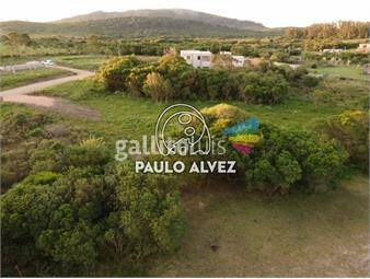 https://www.gallito.com.uy/terrenos-venta-punta-colorada-te273-inmuebles-20052882