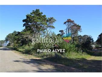 https://www.gallito.com.uy/terrenos-venta-punta-colorada-te254-inmuebles-20052947