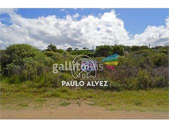 https://www.gallito.com.uy/terrenos-venta-punta-negra-te177-inmuebles-20053237