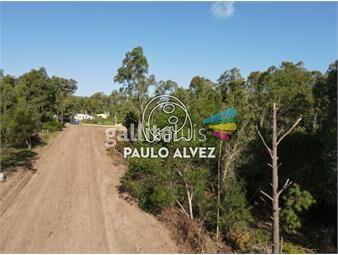 https://www.gallito.com.uy/terrenos-venta-playa-verde-te1260-inmuebles-20053239