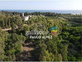 https://www.gallito.com.uy/terrenos-venta-playa-verde-te1266-inmuebles-20053246