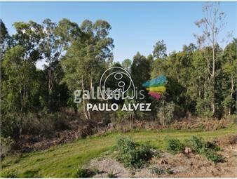 https://www.gallito.com.uy/terrenos-venta-playa-verde-te1267-inmuebles-20053265