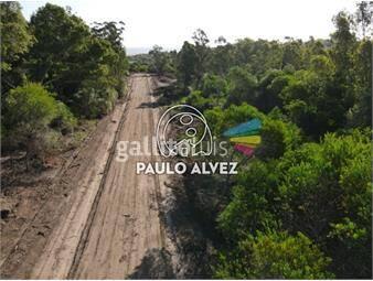 https://www.gallito.com.uy/terrenos-venta-playa-verde-te1271-inmuebles-20053287