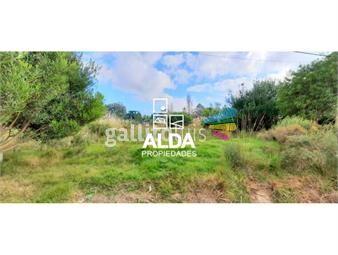 https://www.gallito.com.uy/terreno-en-playa-verde-inmuebles-19900255