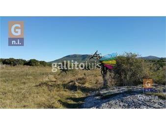 https://www.gallito.com.uy/fracciones-de-campos-ruta-60-ref2480-inmuebles-20129232