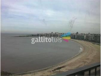https://www.gallito.com.uy/colina-de-oro-inmuebles-19743131