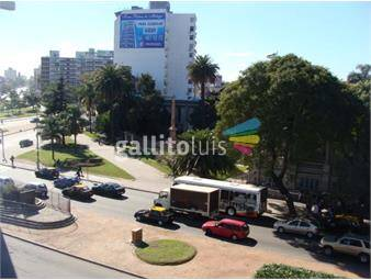 https://www.gallito.com.uy/alquiler-monoambiente-torre-congreso-inmuebles-19742850