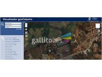 https://www.gallito.com.uy/venta-14-ha-a-metros-ruta-8-km-22-prox-zonamerica-inmuebles-20154398