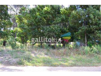 https://www.gallito.com.uy/terrenos-venta-piriapolis-te1118-inmuebles-20206662
