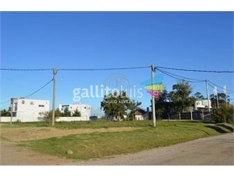 https://www.gallito.com.uy/terrenos-venta-punta-colorada-te511-inmuebles-20207419