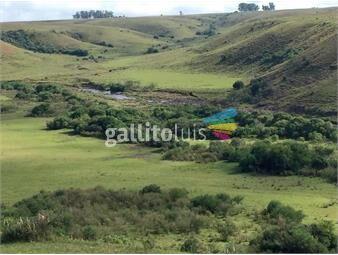 https://www.gallito.com.uy/campo-en-tacuarembo-y-rivera-ref-7923-inmuebles-20235756