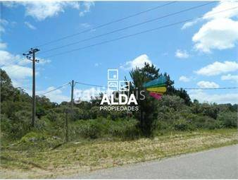 https://www.gallito.com.uy/terreno-en-punta-colorada-inmuebles-14957544