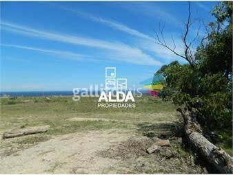 https://www.gallito.com.uy/terreno-en-barra-portezuelo-inmuebles-12805751