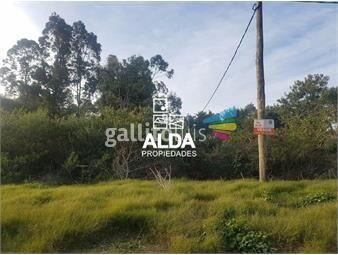 https://www.gallito.com.uy/terreno-en-punta-colorada-inmuebles-17691356