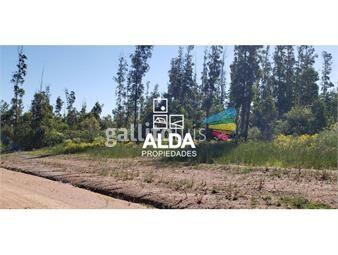https://www.gallito.com.uy/terreno-en-punta-colorada-inmuebles-17691444