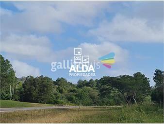 https://www.gallito.com.uy/terreno-en-punta-ballena-inmuebles-19309050