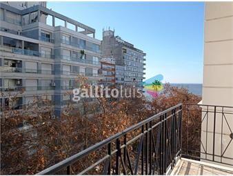 https://www.gallito.com.uy/plaza-gomensoro-amplio-apartamento-inmuebles-19869740