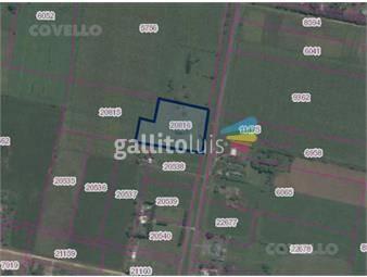 https://www.gallito.com.uy/excelente-campo-sobre-ruta-97-inmuebles-19279596