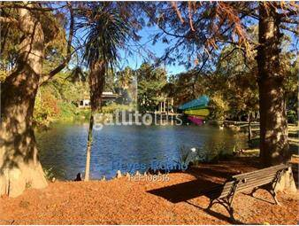 https://www.gallito.com.uy/venta-o-alquiler-apto-1-dormitorio-haras-del-lago-inmuebles-15211456