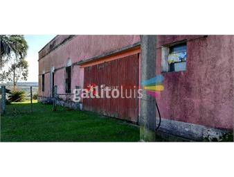 https://www.gallito.com.uy/venta-campo-1917-has-prioridad-forestal-ganaderas-trei-inmuebles-20129410