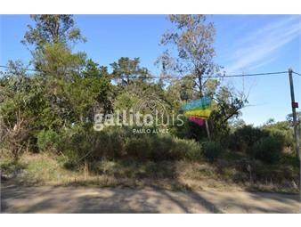 https://www.gallito.com.uy/terrenos-venta-punta-colorada-te873-inmuebles-20402194