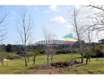 https://www.gallito.com.uy/terrenos-venta-piriapolis-te1224-inmuebles-20458582