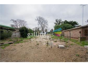 https://www.gallito.com.uy/terrenos-venta-bella-vista-te1289-inmuebles-20459124