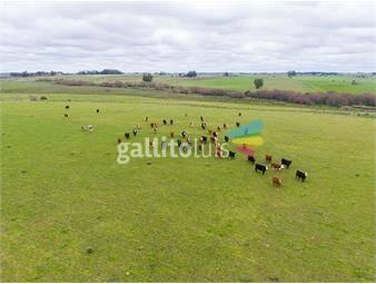 https://www.gallito.com.uy/campo-en-venta-en-florida-ref-4408-inmuebles-20466743