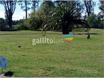 https://www.gallito.com.uy/terreno-sobre-la-playa-en-barrio-real-de-san-carlos-segur-inmuebles-19280254