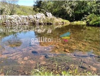 https://www.gallito.com.uy/venta-campo-en-treinta-y-tres-inmuebles-19392581