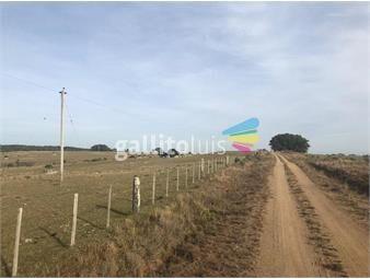 https://www.gallito.com.uy/venta-campo-treinta-y-tres-ganadero-forestal-inmuebles-20151061