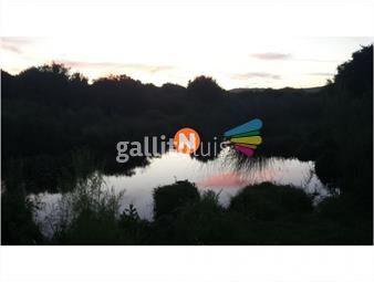 https://www.gallito.com.uy/17-hectareas-chacra-agro-turistica-para-descanso-y-pro-inmuebles-20578870