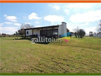 https://www.gallito.com.uy/vendo-chacra-5-has-haras-funcionando-a-metros-de-ruta-10-inmuebles-20343325