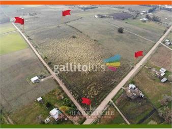 https://www.gallito.com.uy/venta-de-chacra-4-has-en-los-cerrillos-canelones-inmuebles-20343564