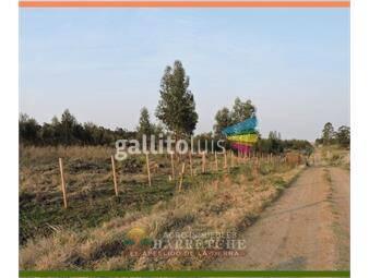 https://www.gallito.com.uy/venta-de-campo-168-has-en-sauce-canelones-inmuebles-19240884