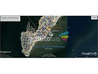 https://www.gallito.com.uy/ideal-inversores-a-metros-de-playa-brava-inmuebles-20628078