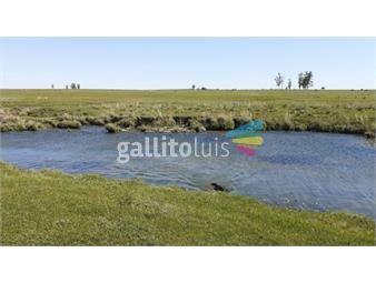 https://www.gallito.com.uy/730-has-campo-ganadero-precio-inigualable-consulte-inmuebles-20635764