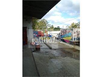 https://www.gallito.com.uy/gran-planta-industrial-de-elaboracion-y-deposito-de-alimen-inmuebles-12699782