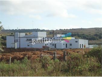 https://www.gallito.com.uy/frigorifico-acegua-inmuebles-13550662