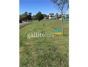 https://www.gallito.com.uy/el-mejor-terreno-en-altos-de-la-tahona-en-esquina-inmuebles-13551206