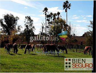 https://www.gallito.com.uy/hermosa-chacra-1181has-en-vta-en-las-brujascanelonelones-inmuebles-13719773