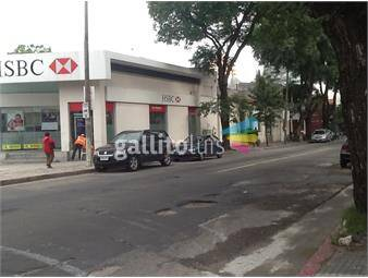 https://www.gallito.com.uy/inmejorable-ubicacion-ellauri-a-mts-del-shopping-inmuebles-13853270