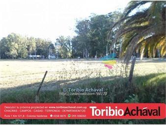 https://www.gallito.com.uy/terrenos-en-nueva-helvecia-inmuebles-13920863