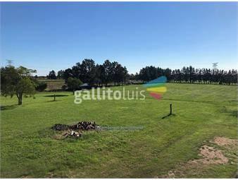 https://www.gallito.com.uy/terreno-en-alquiler-peñarol-viejo-perimetral-102-inmuebles-13921102