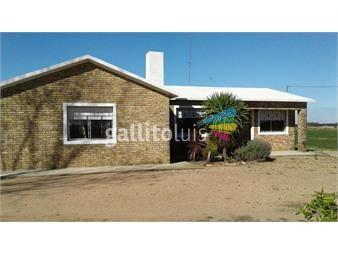 https://www.gallito.com.uy/campo-6-has-los-cerrillos-canelones-con-hermosa-casa-inmuebles-13871620