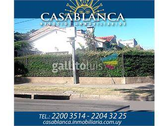https://www.gallito.com.uy/casablanca-ideal-inversores-60mts-de-frente-inmuebles-13209681