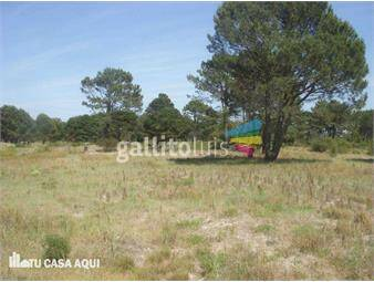 https://www.gallito.com.uy/ideal-para-inversionista-terreno-solymar-venta-inmuebles-12794354