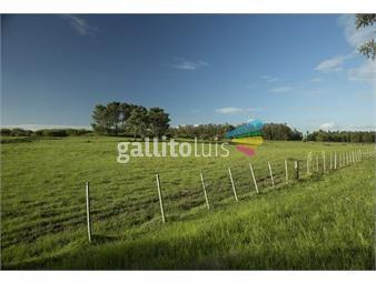 https://www.gallito.com.uy/quinta-en-venta-inmuebles-17360513